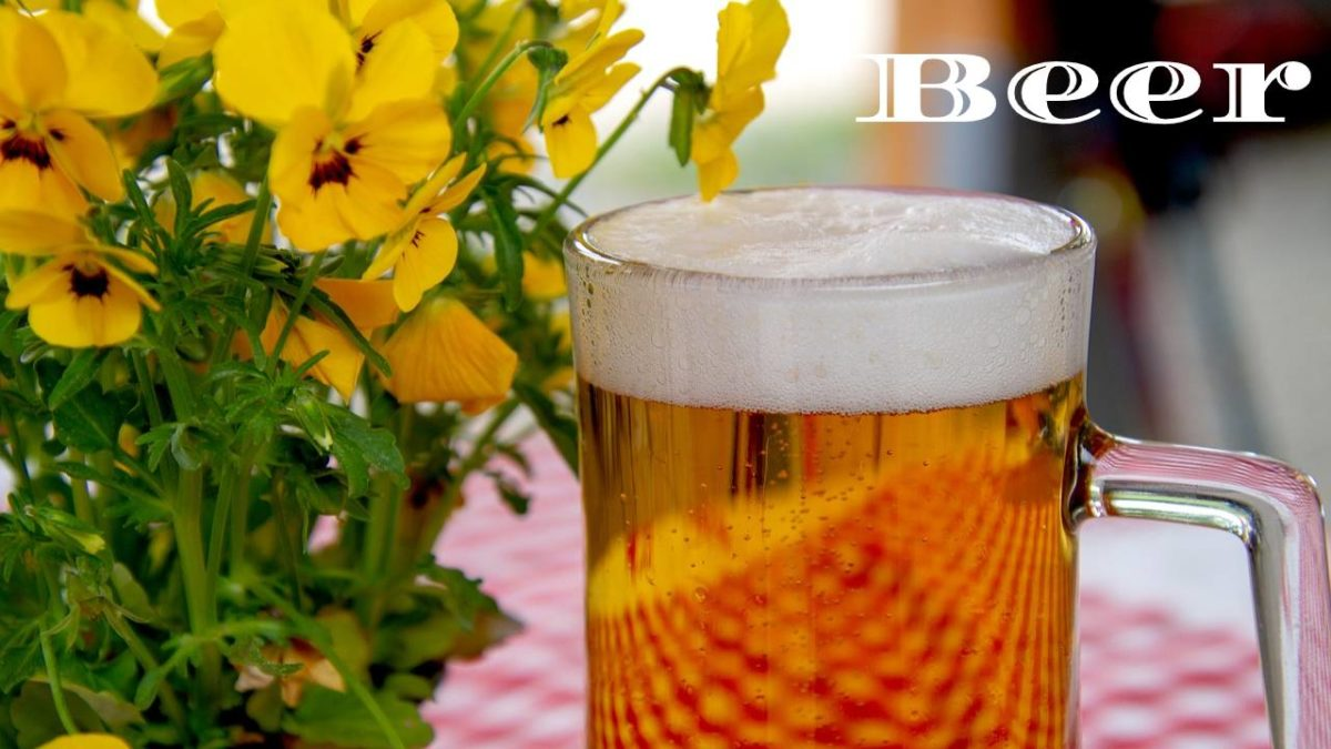 Beer – How many beers you need to drink to become drunk?