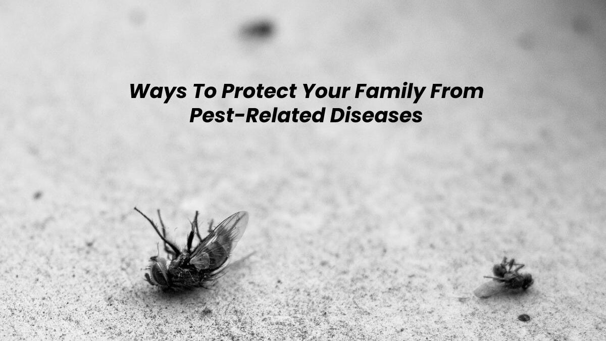 Ways To Protect Your Family From Pest-Related Diseases