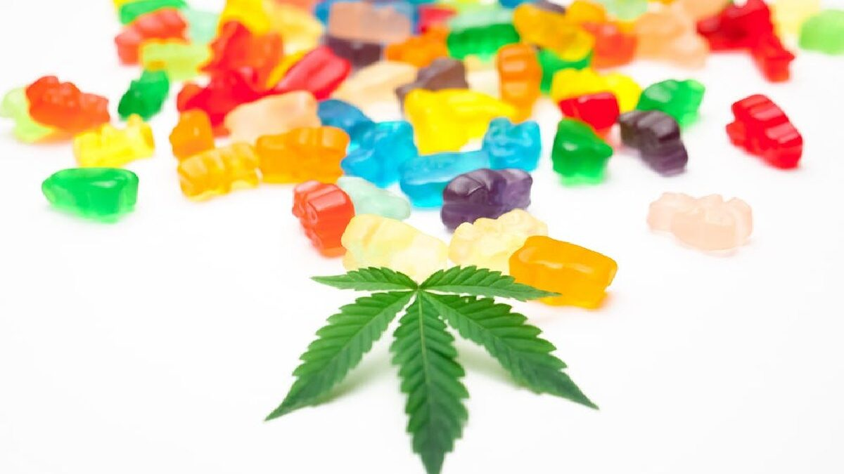 How to Choose the Right CBD Edibles?